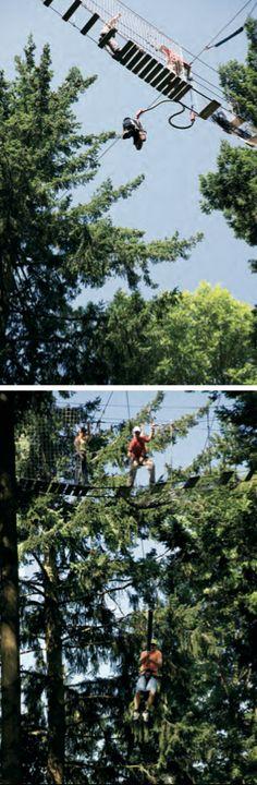 Bungee jumping o salt al buit. Aquesta modalitat consisteix a llançar-se al buit des de gran altura amb una corda elàstica lligada als peus, per això alguns consideren que es tracta d'una variant del pònting, que es fa amb una corda pendular. Una de les opcions per practicar aquesta especialitat de risc a les comarques gironines és en les instal·lacions del centre extrem de la Selva de l'Aventura, situat al coll de Revell d'Arbúcies. TopGirona nº 33