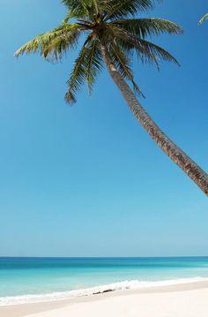 Wonders Of Nature ^-^ Savi New Travel, India Travel, Beautiful Places To Visit, Beautiful Beaches, Places To Travel, Places To See, Sri Lanka Photography, Ceylon Sri Lanka, Beyond The Sea