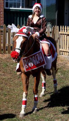 Rudolph, the Red Nose Reindeer...er, horse!