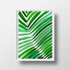 Palma de la hoja - N0 -01  Reproducción de mi acuarela original.  IMPORTANTE: Por favor, no olvide de darle su número de contacto de DHL  Por favor, seleccione el tamaño, papel en el menú desplegable TAMAÑOS DISPONIBLES (1) mini tamaño de póster (grande) - 11.7 x 16.5 (tamaño de papel A3) (2) tamaño de póster mini (pequeño) - 11 x14 pulgadas (3) de la pared tamaño (grande) - 12 x 8 pulgadas (tamaño de papel A4) (4) tamaño (pequeño) de la pared * - 10 x 8 pulgadas (5) tamaño de escritorio - 5…