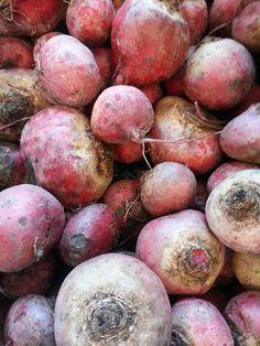Beets from Roots  & Shoots Farm, Winter Markets 2016 #ottawafarmersmarket #lansdownefarmersmarket
