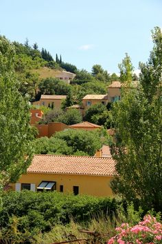 Provence - going to WWOOF here
