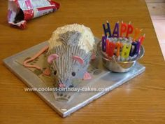Homemade Rat Birthday Cake: My son is rat mad and has 5 male pet rats of his own, so when his birthday came around really didn't have to think about it very long. I based the shape