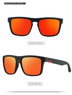 2ce934e93ca1 Glasses Men Women Sports Cycling Sunglasses Outdoor Hiking Camping Driving  Eyewear