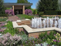 Understanding the emotional and psychological benefits of healing gardens, the nursing home where Mary lived featured a beautiful, lush outdoor space filled with trees, flowers [Read More...]