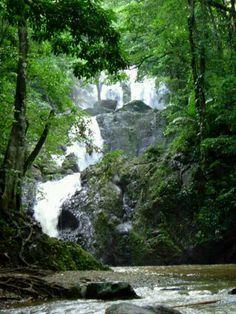 Argyle Falls.Tobago