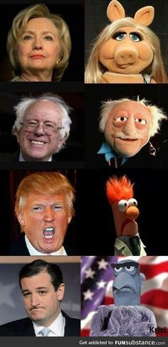 SOOOO TRUE!  SOOOOOO FUNNY!  LOL.  The Muppet show
