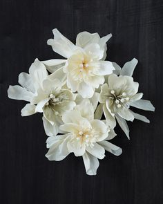 White Crepe Paper Flowers by Thuss+Farrell ~ Pretty ~