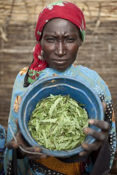 Adoaga Ousmane holds a bowl of leaves she will combine with ground maize and… World Press Photo, World Food Programme, Global Village, Village People, Whats For Lunch, Green Shades, Documentary Photographers, African Women, Social Justice