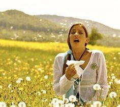 Les huiles essentielles contre le rhume des foins et les allergies au pollen.   Les allergies au pollen peuvent gâcher notre vie en cette belle période printanière. Que faire et comment s'en débarrasser ? Toutes les explications et nos recettes de synergies d'huiles essentielles contre ce que l'on appelle également le rhume des foins (rhinite allergique) sont à découvrir dans notre dossier spécial allergies au pollen.