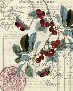 Vintage Illustrations Botanical Red Cherry Print, Pillow, Note Cards, Tea Towel - Original artwork created from vintage bookplates, etchings Éphémères Vintage, Decoupage Vintage, Decoupage Paper, Vintage Ephemera, Vintage Cards, Vintage Paper, Vintage Postcards, Vintage Prints, Vintage Images