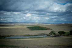 Northern Idaho Wine | Lindsay Creek Vineyards | #idahowines | Photo Credit: Kim Fetrow  Photography