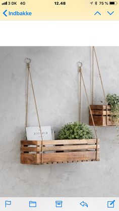 Holzkiste Holzkiste The post Holzkiste appeared first on Wohnung ideen. Holzkiste Holzkiste The post Holzkiste appeared first on Wohnung ideen. House Plants Decor, Plant Decor, Plant Wall, Wooden Diy, Wooden Boxes, Wooden Box Shelves, Wall Hanging Shelves, Rope Shelves, Wooden Crafts