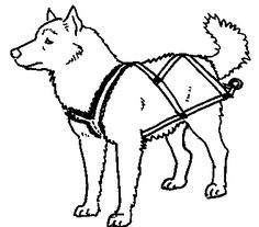 DIY various types of dog #harness for walking, pulling, sledding, etc.