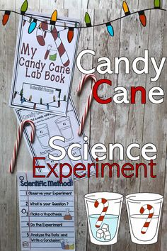 This fun science experiment explores a Christmas treat and science. This is an interactive science lesson that observes the effects of several liquids on candy canes. This experiment can be done as a whole class, or in small groups. Toddler Science Experiments, Science For Kids, Science Lessons, Science Crafts, Science Fair Projects, Science Activities, Second Grade Science, Kindergarten Science, Elementary Science