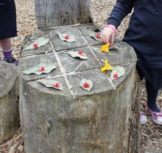 Precious Childhood: Loose Parts - Nature Indoors and Outdoors