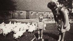 Kindheit - Geschichte - Erinnerung
