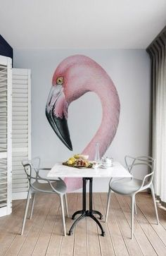 Flamingo on a wall in a small space