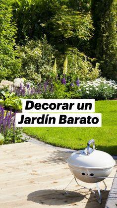 Garden Projects, Stepping Stones, 1, Gardening, Outdoor Decor, Plants, Gardens, Gravel Driveway, Hanging Baskets