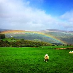 This is why we love Ireland. Photo courtesy of loveelyplanet on Instagram.