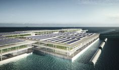 This Floating Solar Farm May One Day Grow 8,000 Tons Of Veggies Every Year