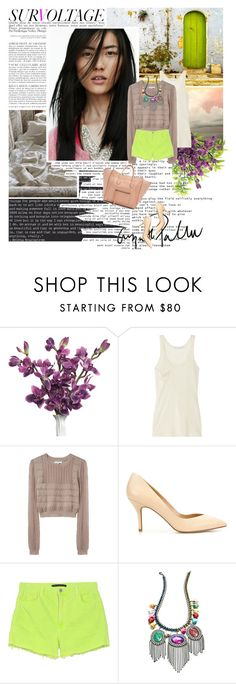 """""""Liu Wen"""" by esse-is-for-sabrina ❤ liked on Polyvore featuring Zara, Kain, Opening Ceremony, Christopher Kane, DANNIJO and liu wen"""