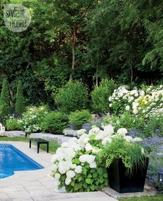 Outdoor living: Chic Hamptons-inspired haven - blue, white and green