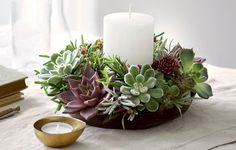 3 Ways To Decorate For The Holidays With Succulents  http://www.rodalesorganiclife.com/home/3-ways-to-decorate-for-the-holidays-with-succulents
