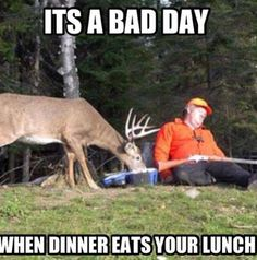 We have combined a list of hunting pictures and photos of deer that will surely make you laugh. Funny hunting photos to share. Browse funny deer pics now > Funny Animal Pictures, Funny Photos, Funny Animals, Funny Images, Animal Memes, Animal Fails, Funniest Pictures, Funny Fails, Funny Jokes