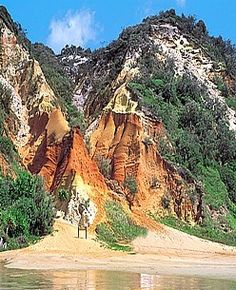 The world's largest sand island Fraser Island Queensland Australia and one of my favorite places