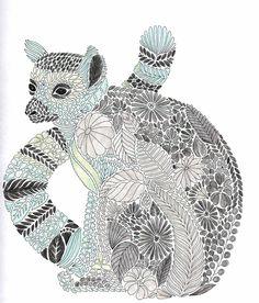 Millie Marotta Tropical Wonderland - Lemur