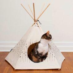 Entre núvols de cotó #cat #cats #gato #gatos #Katze #neko #猫 #goyang-i #고양이 #Māo #猫 #Mæw #แมว #chat #قط #kissa #mačka #мачка #кот #Bilī #ਬਿੱਲੀ #Billī #बिल्ली #חתול #gáta #γάτα #pisică #macska