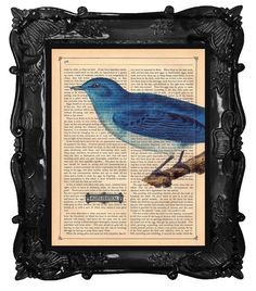 Beautiful BLUE BIRD art print Blues Festival on a by BlackBaroque, $10.00