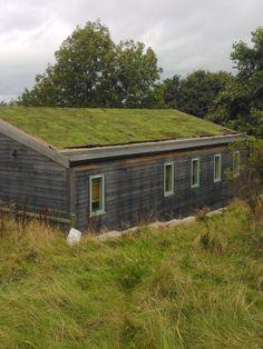 green roof Holmfirth School Yorkshire