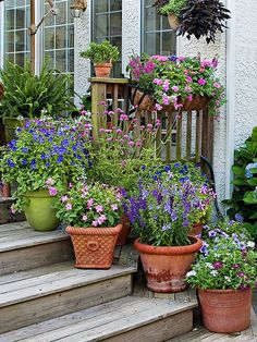 How to Group Container Gardens Together Camouflage container elevators by placing shorter pots full of rounded mound-shape plants such as Lantana, Pentas, Melampodium, Profusion zinnia, or geranium in front of the elevators. To screen taller plant lifts, position misty-shape plants like Diamond Frost Euphorbia or Mexican feathergrass in front of the supporting objects.
