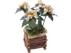 Four Seasons at Chocolates Bouquets | Ignition Marketing Corporate Gifts http://www.ignitionmarketing.co.za/valentines_day.php