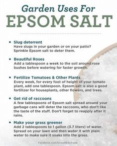 Epsom Salt Garden Uses You Will Love