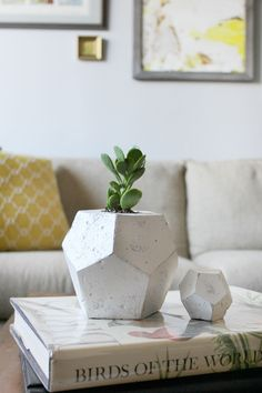 Ginger Snaps Blog: diy: geometric cement pots