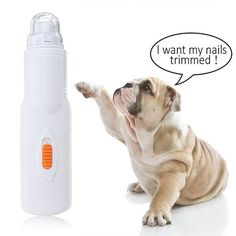 Pet Nail Trimmer – GoAmiroo Store