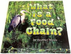 Harcourt Science Grade 2 Reader What Is a Food Chain Homeschool Guided Reading