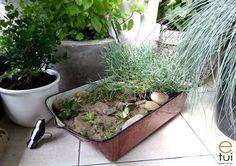 skrzynki_z_szuflad_3 Plants, Diy, Balcony, Bricolage, Do It Yourself, Plant, Homemade, Diys, Planets