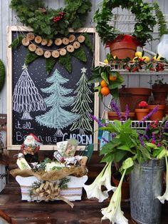...a quiet life...: garden advent dec 18th