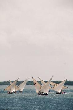 Dhow race, Lamu Island, Kenya, Photo Sandy B