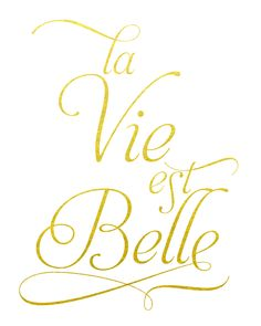 La vie est belle. Life is beautiful. Created 80 lb. white satin-finish cardstock and actual foil. Pink print is printed on 67 lb. acid-free specialty paper with archival inks.