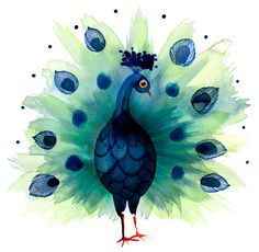 Margaret Berg Art: Peacock Passion