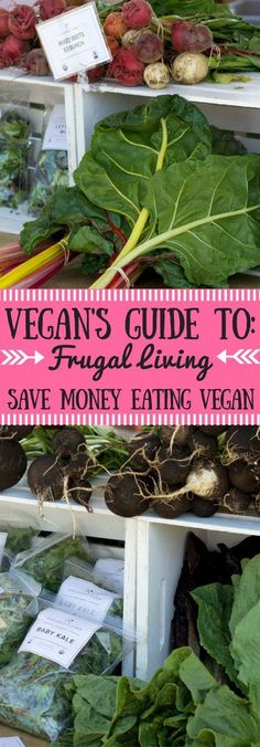 Want to know how to survive as a vegan on a budget!? I'm here to help! Here are my top tips and tricks to help save the most money while following a vegan diet. Includes DIY, zero-waste, bulk, and grocery shopping secrets.