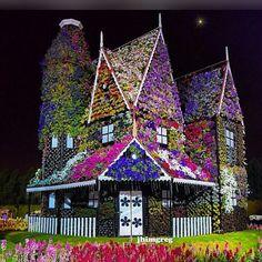 Photo Grid ile Oluşturuldu.  Android  https://play.google.com/store/apps/details?id=com.roidapp.photogrid  iPhone  https://itunes.apple.com/us/app/photo-grid-collage-maker/id543577420?mt=8