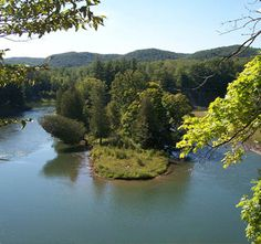 Manistee River Trail - Hiking