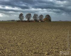 DAY 3: Groeneweg, Zaamslagpolder  Project 4.12.365  http://phototroost.com/gallery/365/ #412365
