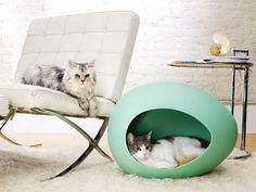 Secret Cat Hideaways